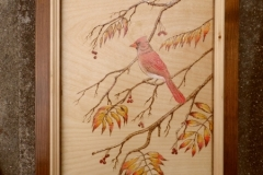Commission female cardinal