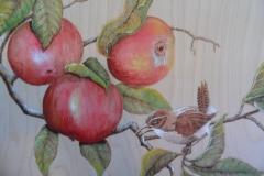 Chakadee and apples